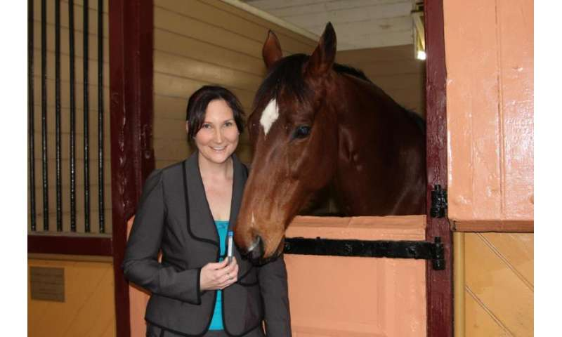 Link between champion horses and offspring careers revealed