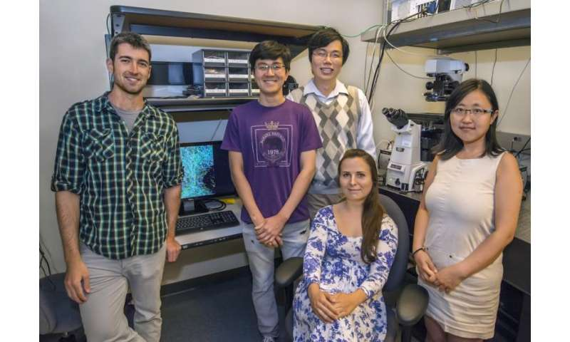 Major innovation in molecular imaging delivers spatial and spectral info simultaneously