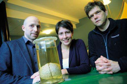 Mathematics to reveal the secrets of the brain