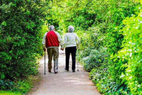 Mayo Clinic and collaborators find new class of drugs that reduces aging in mice