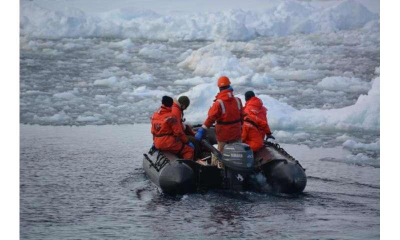 Melting glaciers feed Antarctic food chain