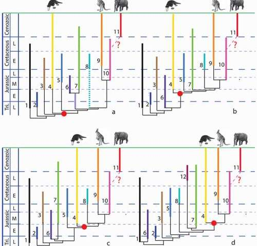 Mesozoic mammals -- what do we know from China?