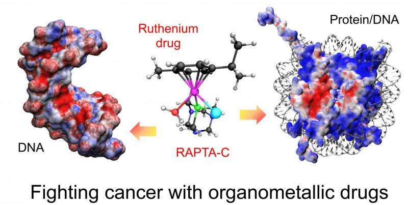 """""""Metal"""" drugs to fight cancer"""