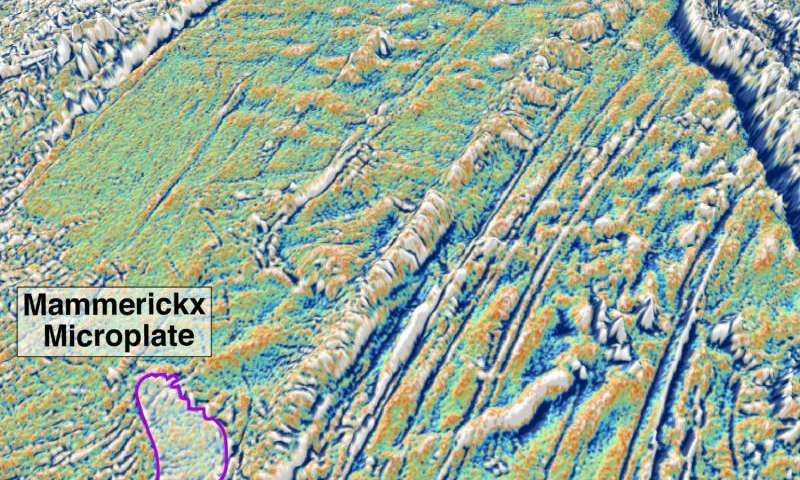 Microplate discovery dates birth of Himalayas