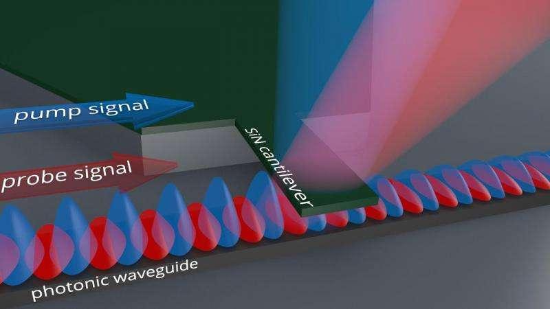 MIPT physicists develop ultrasensitive nanomechanical biosensor