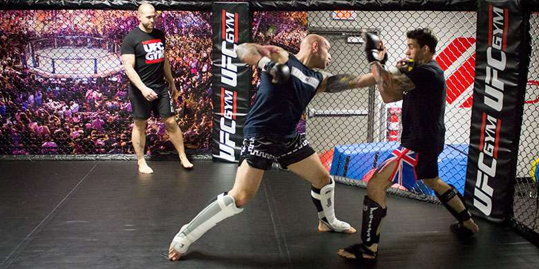 Mixed martial arts bloodier but less dangerous than boxing: Study