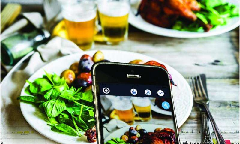 Mobile app records our erratic eating habits