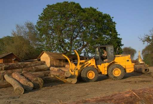 Myanmar has sentenced an unspecified number of Chinese nationals to more than a decade in jail for illegal logging, China's stat