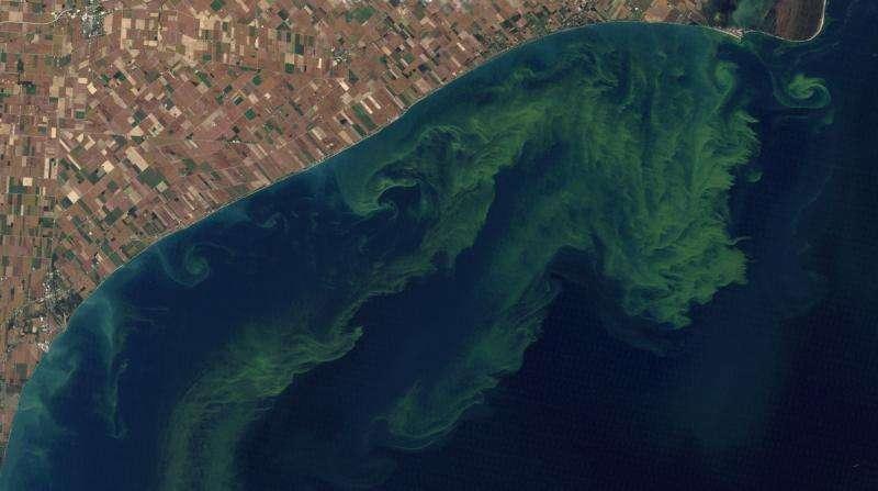 NASA joins forces to put satellite eyes on threat to U.S. freshwater