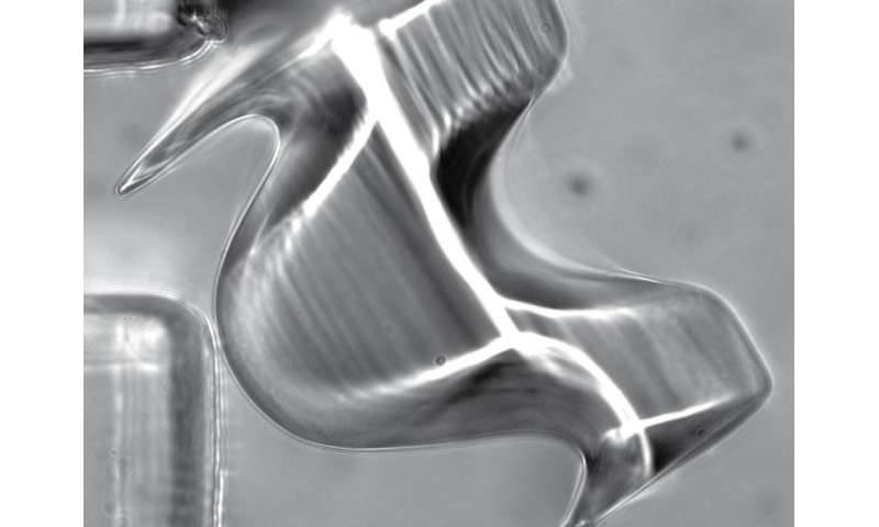 New 3-D printing method creates complex micro objects