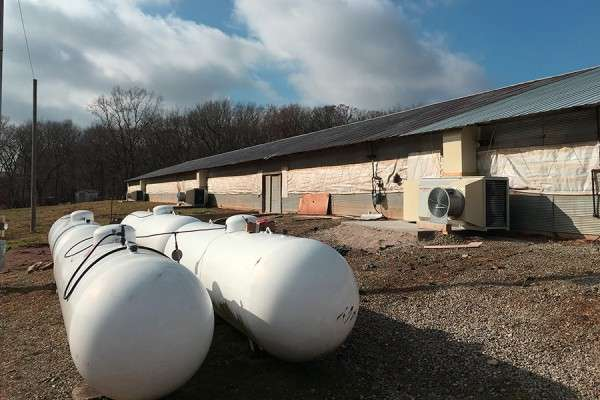 New air recovery system could save poultry farmers millions annually