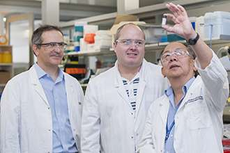 New anti-inflammatory molecule could halt MS progression