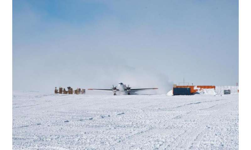 New arrivals in Antarctica