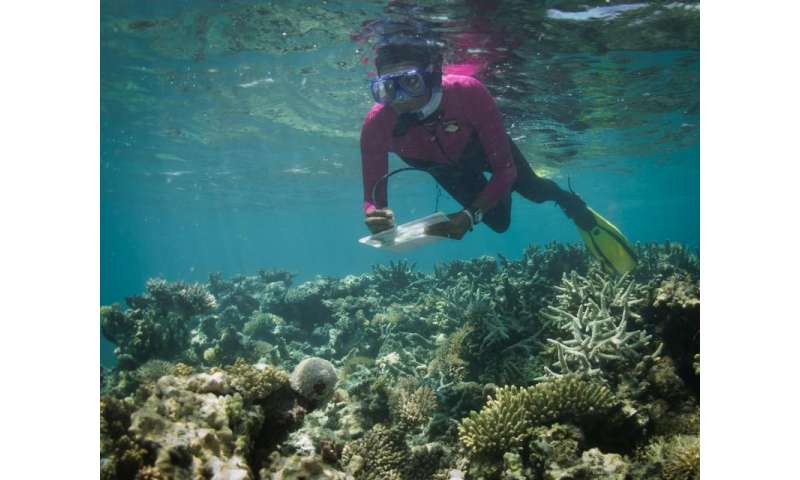 New climate stress index model challenges doomsday forecasts for world's coral reefs