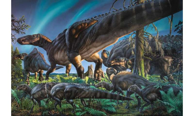 New hadrosaur species discovered on Alaska's North Slope