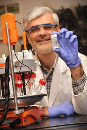 New material captures carbon dioxide with high capacity