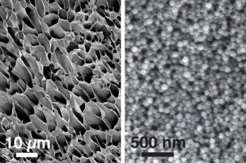 New nanogel for drug delivery