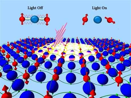 New route for switching magnets using light