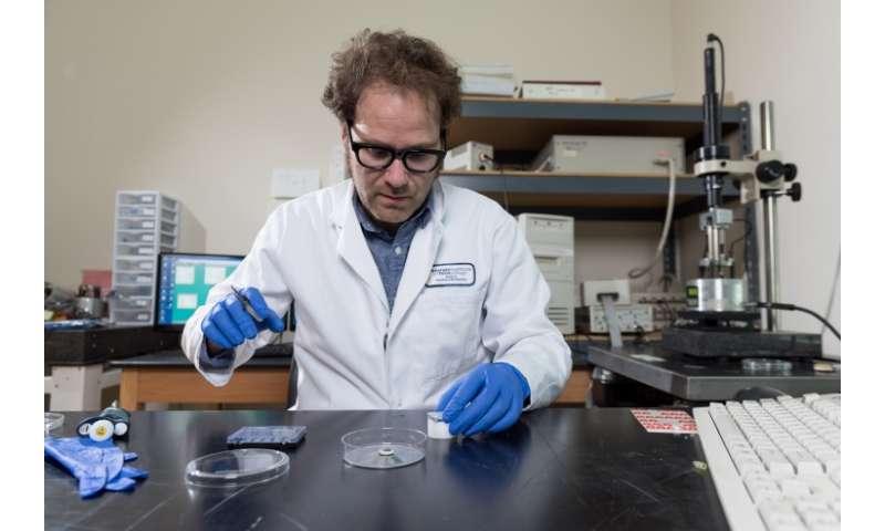 Non-aqueous solvent supports DNA nanotechnology