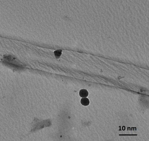 Novel plastic could spur new green energy applications, 'artificial muscles'