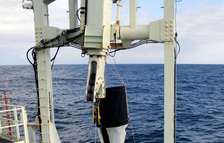 Ocean bacteria get 'pumped up'