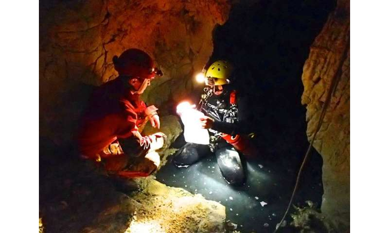Only above-water microbes play a role in cave development