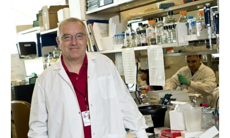 Pancreatic cancer loses viral defenses when talking with supporting cells