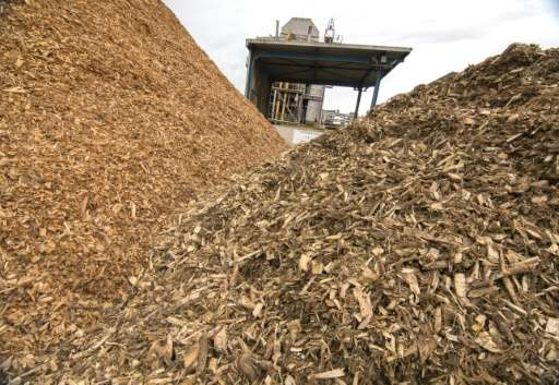 Piles of wooden chips to be processed at the Guessing Energy Technologies research centre in the Austrian town of Guessing