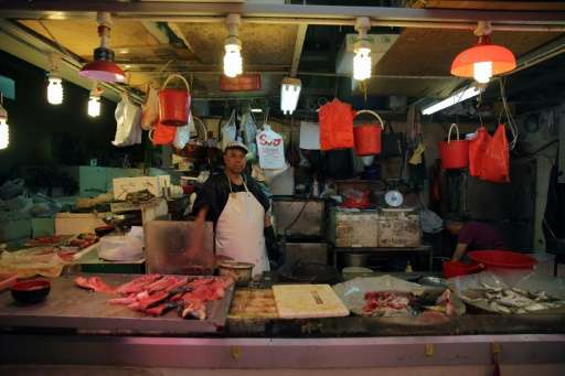 Popular, threatened seafood in Hong Kong include grouper, wild sea cucumber and humphead wrasse—a coral reef fish