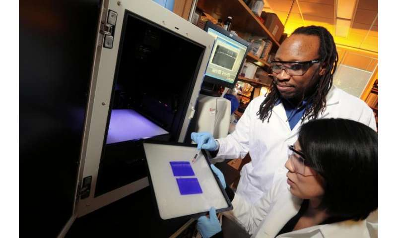 Predictive model could help guide choices for breast cancer therapies