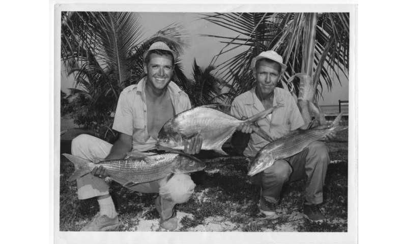 Project Bay Bones investigates bonefish decline