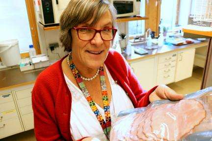 Project to develop sausages with antioxidants from berries to prevent cancer