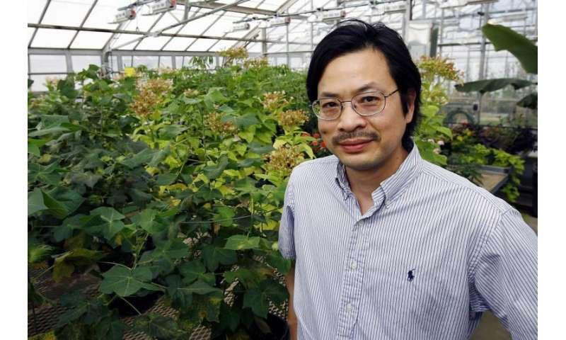 Protecting plants from stealthy diseases