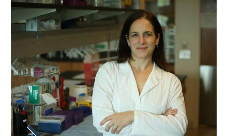 Protein may trigger cancer cell's metabolism