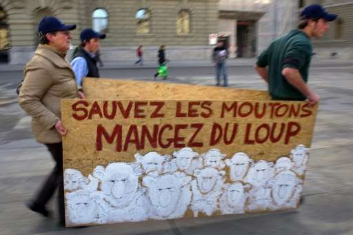 """Protesters carry a banner reading in French, """"Save sheep, eat wolf"""" during a protest by stock breeders and farmers aga"""