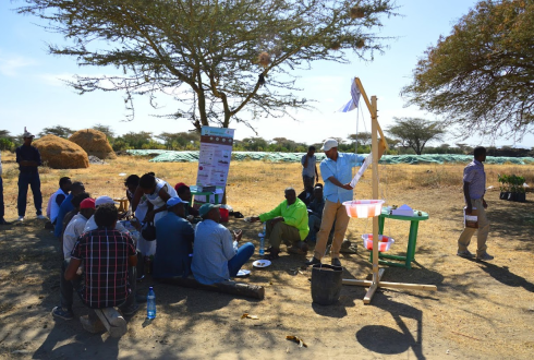 Raising awareness and bringing actors together during the Ethiopian Soil Campaign