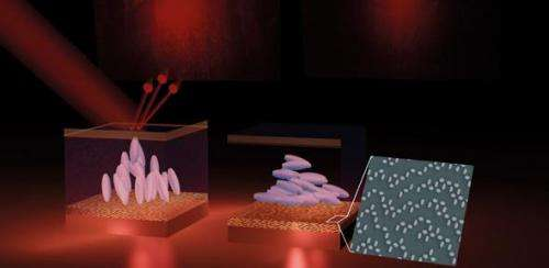 Real-time holographic displays one step closer to reality