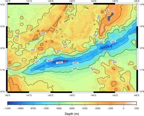 Remotely operated vehicle finds heterotrophs abundant in deepest part of the ocean