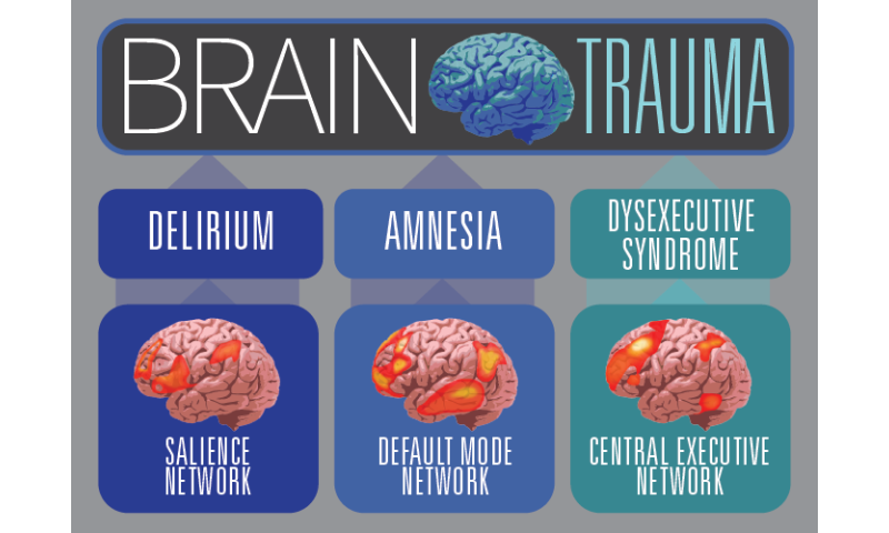 Report: Brain-injured patients need therapies based on cognitive neuroscience