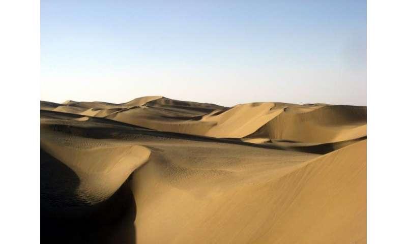 Researchers narrow birth estimate for the Takliman Desert