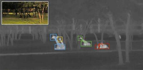 Researchers scan video to monitor nighttime behavior of giraffes