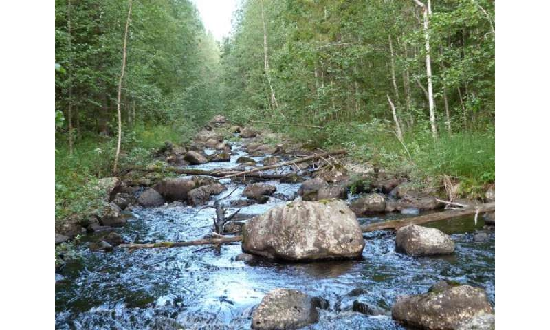 Restored streams take 25 years or longer to recover