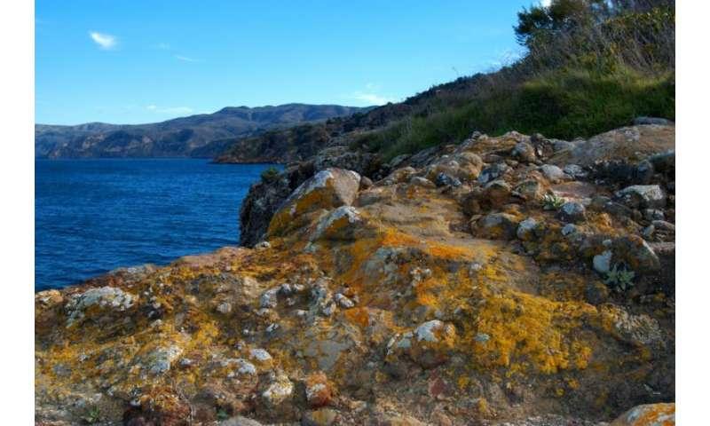 Restoring ocean health
