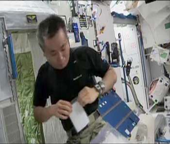Results for microbes collected by citizen scientists and grown on the International Space Station