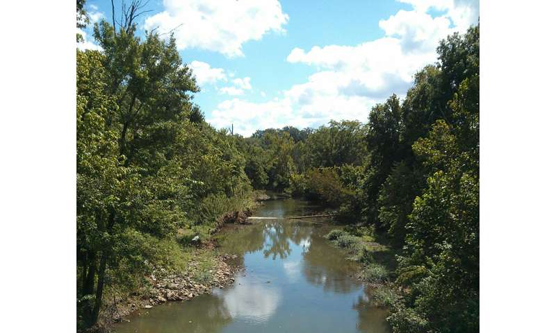 Retention ponds can significantly decrease runoff, study shows