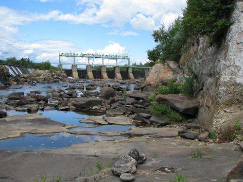 River algae affecting mercury pollution at Superfund site, Dartmouth-led study shows