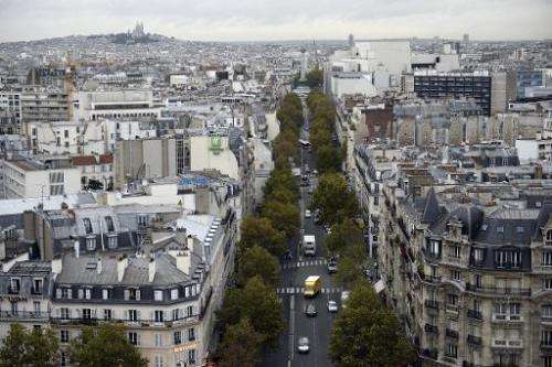 Rooftops on new buildings built in commercial zones in France, a view of Paris seen here, must either be partially covered in pl