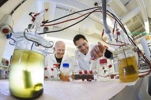 Running fuel cells on bacteria