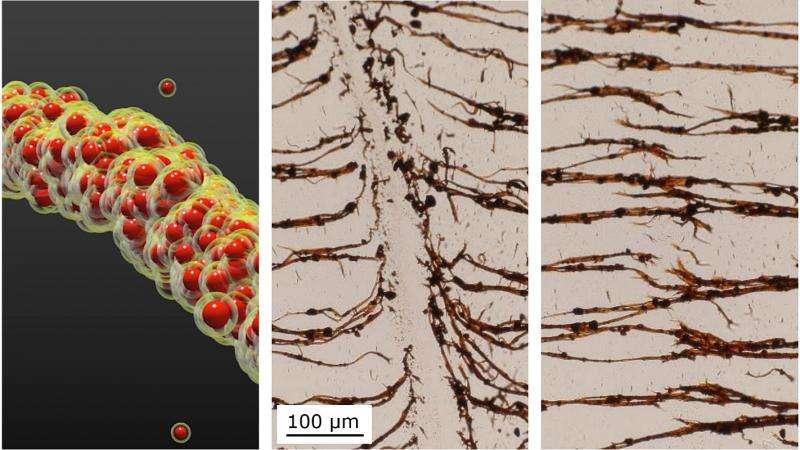 Sandcastles inspire new nanoparticle binding technique