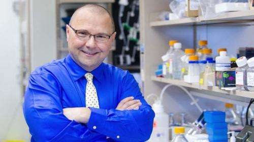 Science: Chromosome 'bumper repair' gene predicts cancer patient outcomes